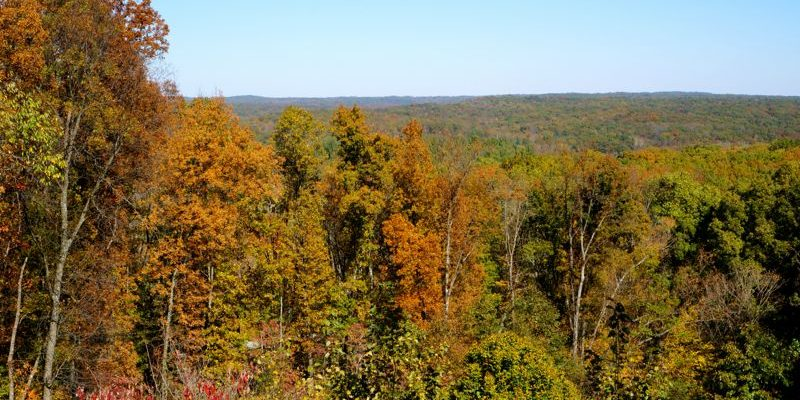 Our Family Fall Getaway in Brown County